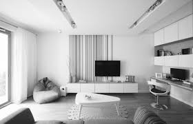 ideas for wall decor in apts imanada narrow apartment living room