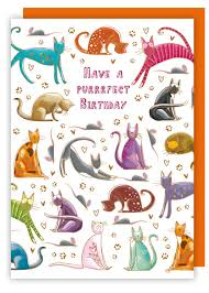 cat themed stationery colourful cats birthday card