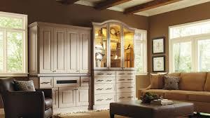 Modern Storage Cabinets For Living Room Storage For Living Rooms Comfortable 11 Ikea Living Room Storage