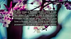Flower Love Quotes by Osho Quote U201cif You Love A Flower Don U0027t Pick It Up Because If