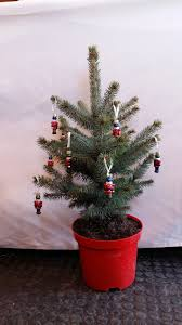 real minihristmas tree superb tabletop design