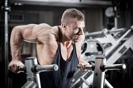 Close Grip Bench Press Benefits The 5 Best Triceps Exercises For Building Mass U0026 Strength