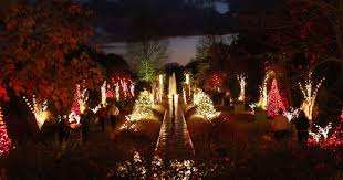 Saluda Shoals Lights Search Visitnc Com North Carolina Events And Festivals