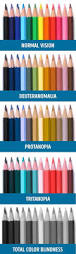 different types of color blindness demonstrated