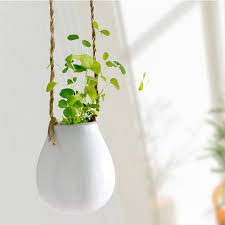 advantages of having indoor hanging planters decor on the line