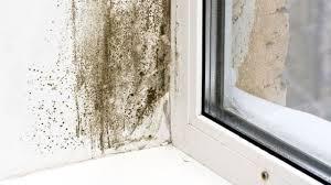 lutter contre l humidité dans une chambre comment traiter et combattre l humidité côté maison