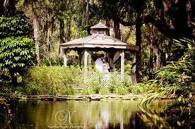 wedding venues in washington state weddings friends of washington oaks gardens state park someday