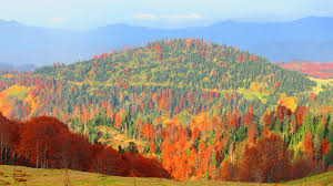about sights u2013 autumn colors in bakhmaro by levan sikharulidze