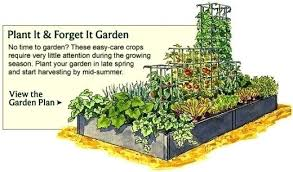 Garden Layout How To Layout A Vegetable Garden Vegetable Garden Plans For Raised