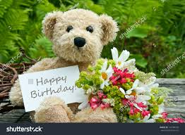 birthday teddy bears and flowers crowdbuild for
