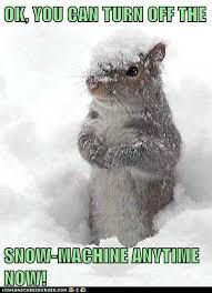 Snow Memes - photos i love snow v i hate snow memes westword