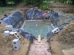Landscaping Around A Pool by Natural Pools Pond Design Natural Swimming Pools Pond Design