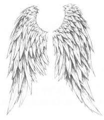 beautiful wings drawing clipartxtras