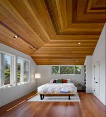 ceiling options home design ceiling choices that are eco pleasant in design decorations tree