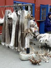 Reindeer Hide Rug Reindeer Skin Rugs For Your Living Room Floor Photo