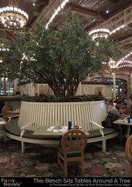 circular bench around a tree at the buffet at main street station