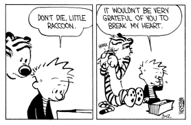 leading questions calvin u0026 hobbes meet a baby raccoon chase