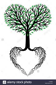 tree of life tree of life heart shaped branches and roots vector illustration