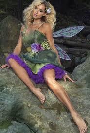 Halloween Costume Fairy Wings Fairy Halloween Costumes Fairy Costumes Pixie Costumes