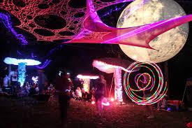 my illuminated mushrooms brighten up every place they go