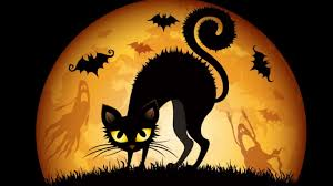 halloween cat wallpaper wallpapersafari