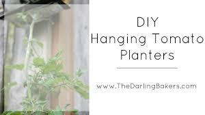 Upside Down Tomato Planter by Gardening Tutorial Spring Craft Collab Diy Upside Down Hanging
