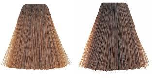 wella cinnamon hair color best hair color 2017