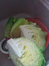 comment cuisiner le chou vert comment cuisiner le chou vert fresh trinxat de cerdagne au chou vert