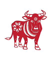 year of the ox 1997 find out some facts about cny