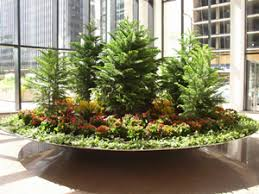 Indoor Plant Arrangements Plant Rentals Landscaping And Design Chicago Il