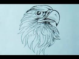 how to draw an eagle head with pen yzarts yzarts youtube