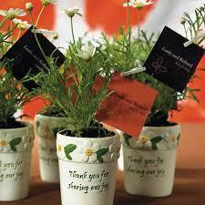mini flower garden plant pots favors the knot shop