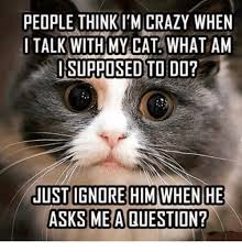 Crazy People Meme - people thinkim crazy when i talk with my cat what am i supposed to