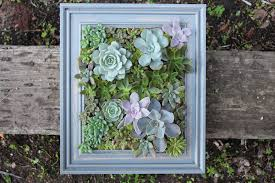 diy a framed succulent wall planter do it yourself projects lonny