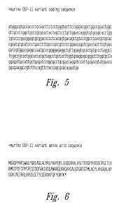 patent us6649391 dsp 11 dual specificity phosphatase google