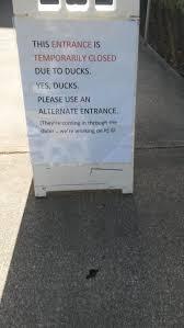 608 best sidewalk signs images on pinterest sidewalk signs