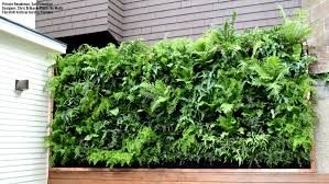 Vertical Garden Pot - gallery plants on walls