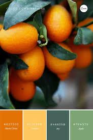 299 besten colour me happy bilder auf pinterest