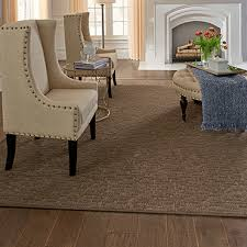 david louis floor covering corp schenectady ny