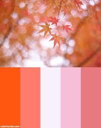 Autumn Color Schemes 21 Best Autumn Images On Pinterest Color Schemes Colors And