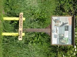 uncategorized archives elford hall garden project