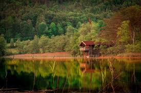 small house in small house in the forest beside lake free photos absolutely for