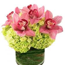 miami flower delivery miami florist flower delivery by blooms and stems