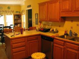 paint kitchen cabinets ideas refrigerator paint ideas u2013 alternatux com
