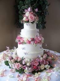 butterfly wedding cake wedding cakes pinterest gardens