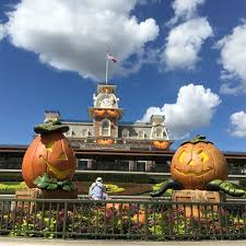 collection walt disney world halloween pictures walt disney world