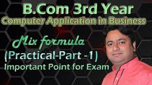practical exam question b com computer application in business