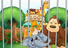 zoo cartoon illustration of a clipart panda free clipart images