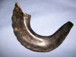 buy shofar horn shofar wholesale shofars at bulk rates rams horn shofar at