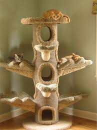 20 most popular cat tree ideas you will fallinpets